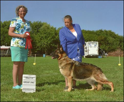 Dog Grooming Classes London Ontario