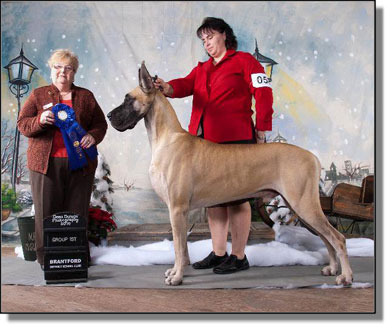 Canuck Dogs: Your source for Canadian dog event information online.