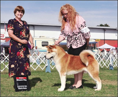 Picture Of A Canuck Dog | Dog Breeds Picture