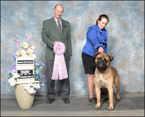 Canuck Dogs: Your source for Canadian dog event information online